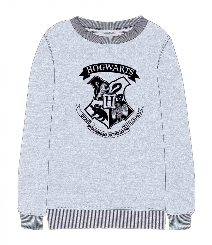 Harry Potter® Bluza gri 136403