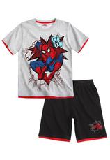 Spider-Man® Compleu vara Gri