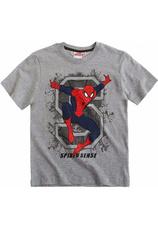 Spider-Man® Tricou Gri