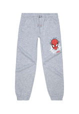 Spider-Man® Pantaloni Trening flausati Gri