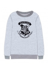 Harry Potter® Bluza gri 136403